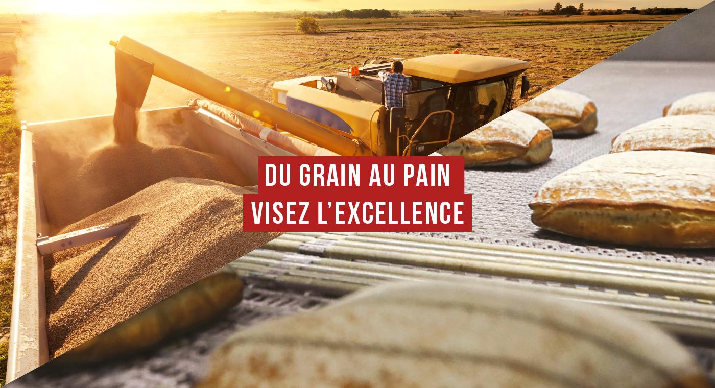 Du grain au pain, visez l'excellence